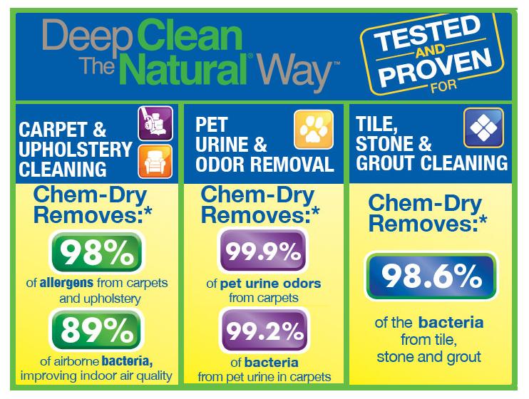 Is Chem Dry Carpet Cleaning Safe Carpet Ideas