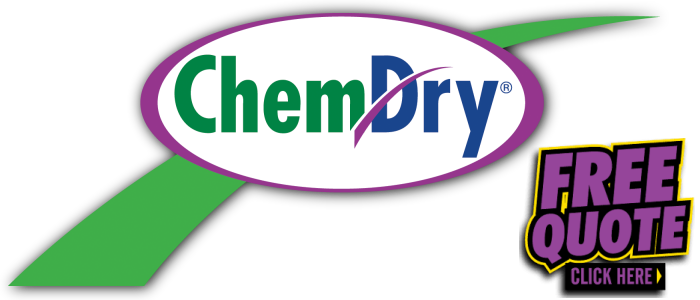 Chem-Dry Port Elizabeth