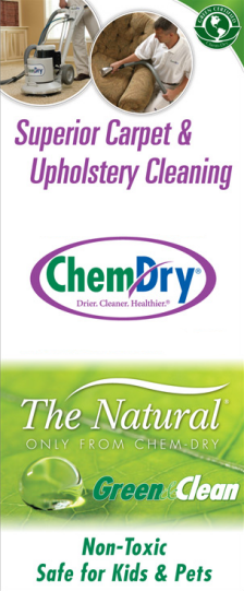 Chem Dry Richards Bay Carpet Cleaning Business For Sale