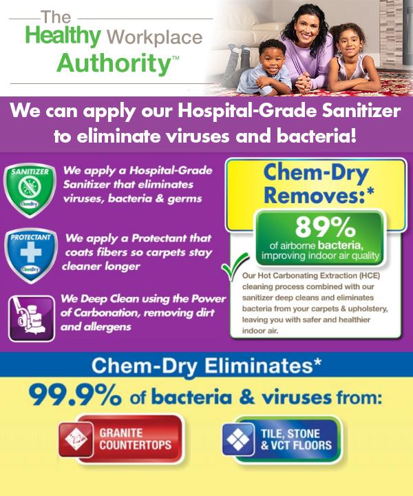 Sanitisation Services